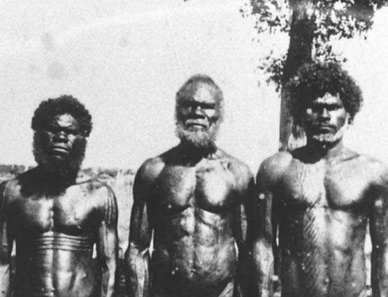 the issues of the treatment of the aboriginal people of australia in the films walkabout and rabbit